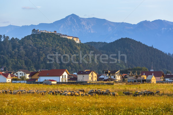 山 ルーマニア 秋 風景 砦 ストックフォト © photosebia