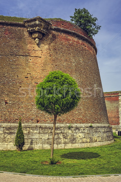 Photo stock: Fortification · murs · arbre · pittoresque · paysages