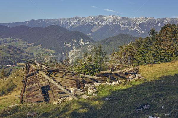 Deserted damaged wooden ramshackle Stock photo © photosebia