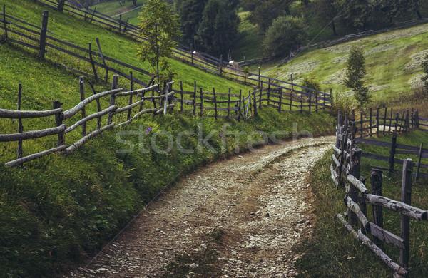 Transylvanian country road Stock photo © photosebia