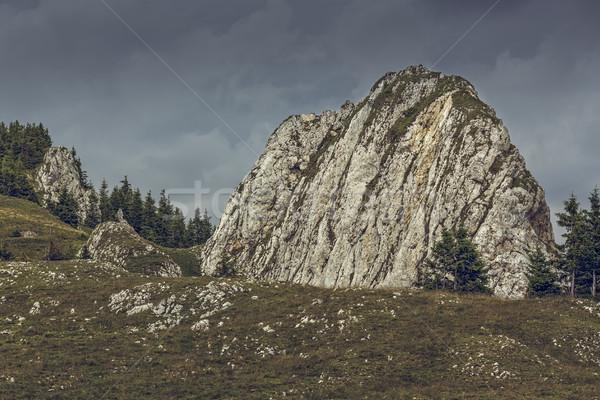 Fırtınalı alpine sahne kısrak Romanya dağ Stok fotoğraf © photosebia