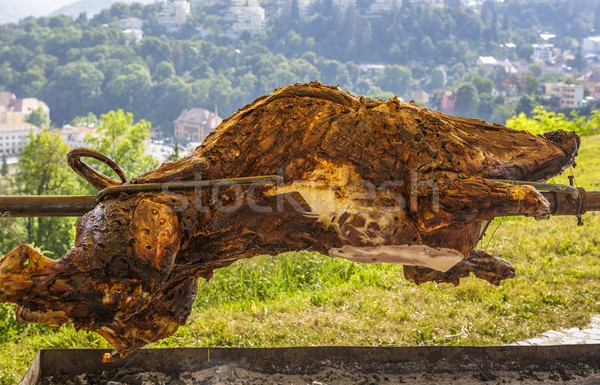 Roasting wild boar Stock photo © photosebia