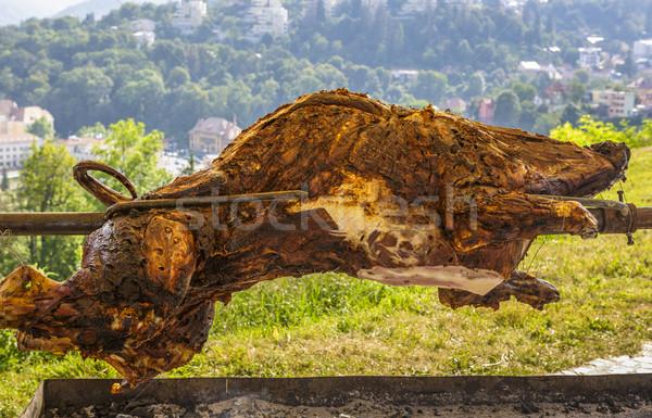Wild mannetjesvarken biefstuk picknick barbecue toast Stockfoto © photosebia