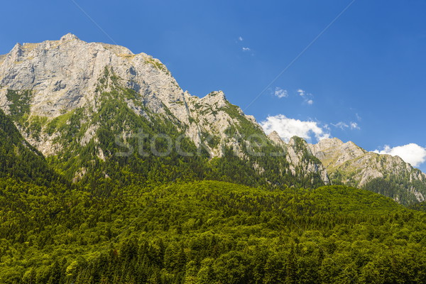 Mountain landscape Stock photo © photosebia