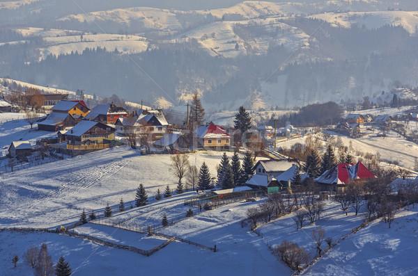 зима пейзаж традиционный румынский деревне Сток-фото © photosebia