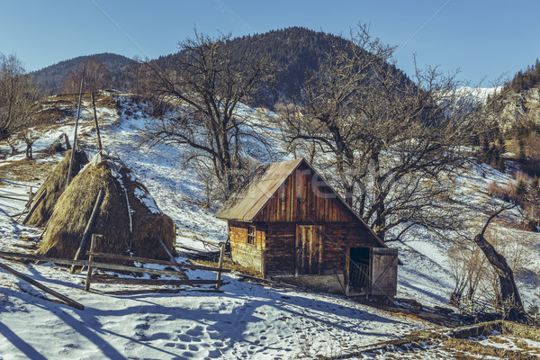 Small rustic Romanian farm Stock photo © photosebia