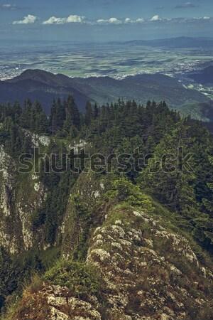 パノラマ 山 風景 風光明媚な 高山 表示 ストックフォト © photosebia