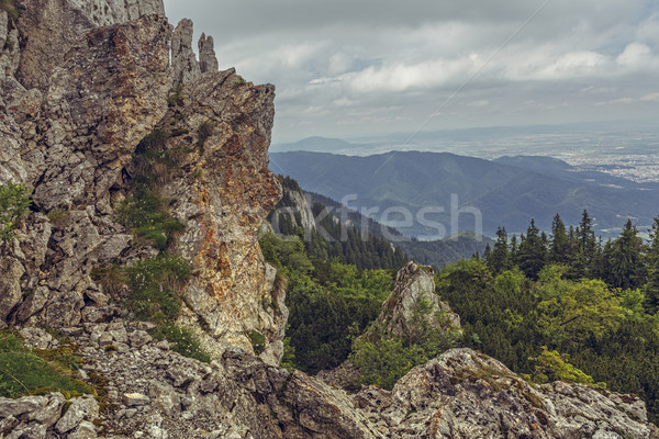 Alpine wilderness and quiet Stock photo © photosebia