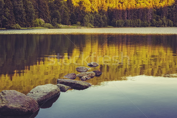 Tranquility over lake Stock photo © photosebia