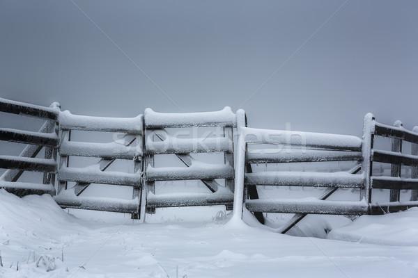 Frozen wooden fence Stock photo © photosebia