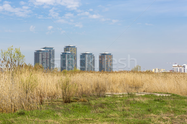 Architecture and reeds Stock photo © photosebia