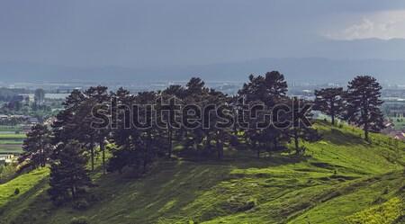Soleil pluie lumière du soleil arbres haut colline Photo stock © photosebia