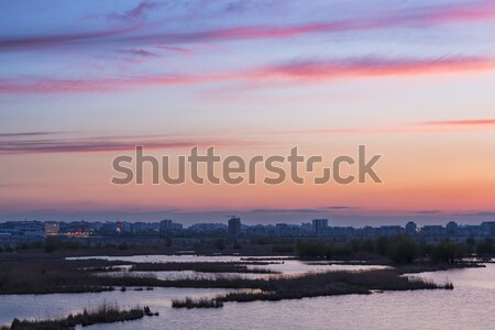 Sunset over swamps Stock photo © photosebia