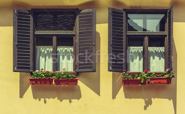 Window with open shutters and flowers Stock photo © photosebia