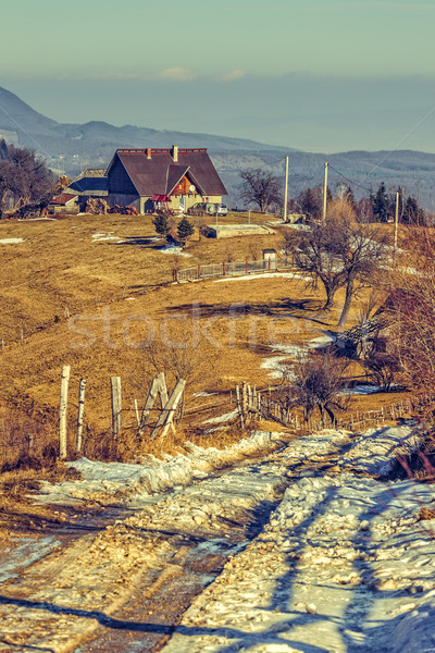 Romanian rural scene Stock photo © photosebia