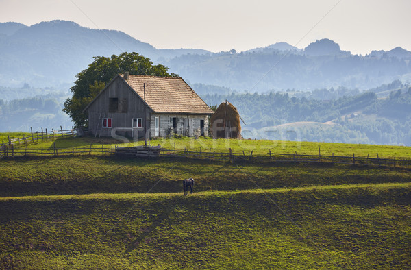 Rural landscape with wooden stable in Rucar-Bran pass, Romania Stock photo © photosebia