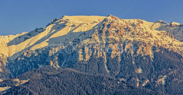 Montagnes Roumanie étroite vue raide couvert Photo stock © photosebia
