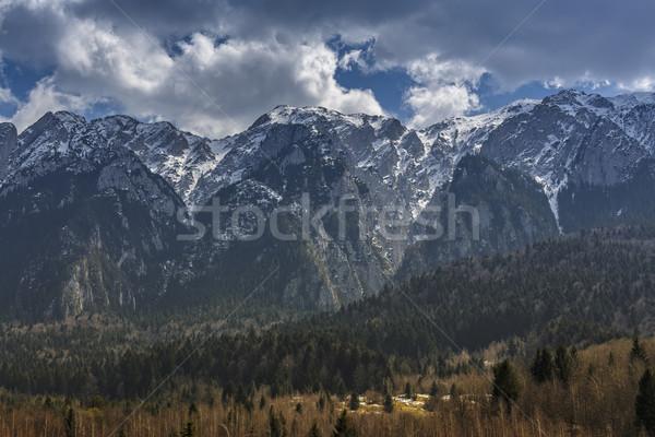 гор мирный альпийский пейзаж парка Сток-фото © photosebia