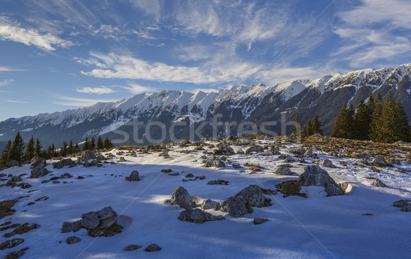 Snowy Zanoaga meadow, Piatra Craiului mountains, Romania Stock photo © photosebia