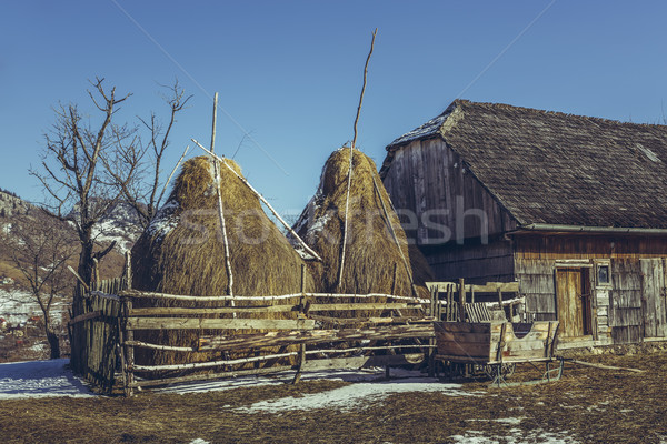 Traditional Romanian farm Stock photo © photosebia