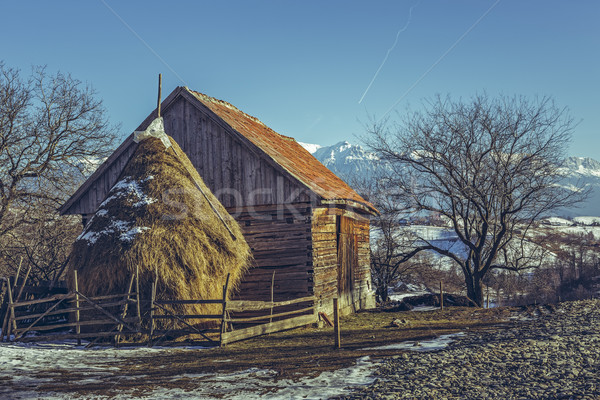 Romanian rural scenery Stock photo © photosebia