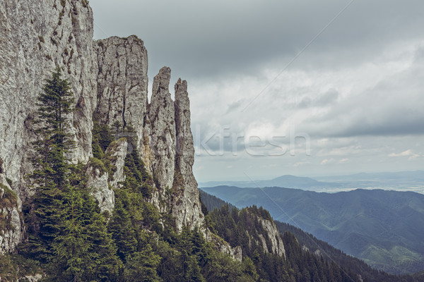 Piatra Mare Mountain, Romania Stock photo © photosebia