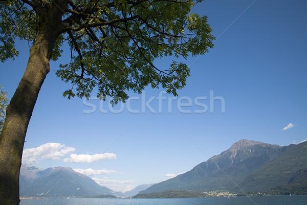 Lago paisagem verão cenário norte Itália Foto stock © photosil