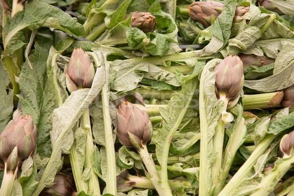 Grupo fresco mercado flor fundo folhas Foto stock © photosil