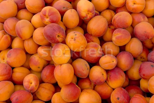 зрелый оранжевый органический фрукты лет фермы Сток-фото © photosil