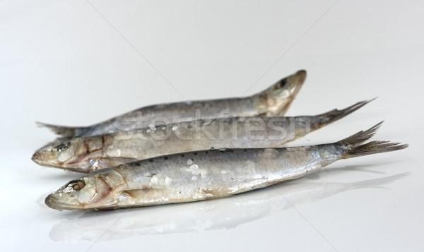 три сырой соль избирательный подход рыбы свежие Сток-фото © photosil