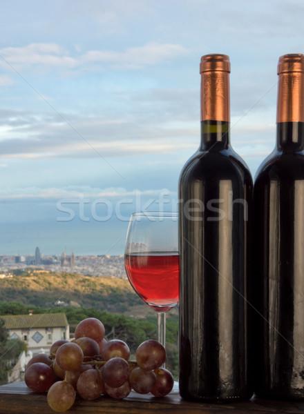 Барселона вино виноград Средиземное море морем город Сток-фото © photosil
