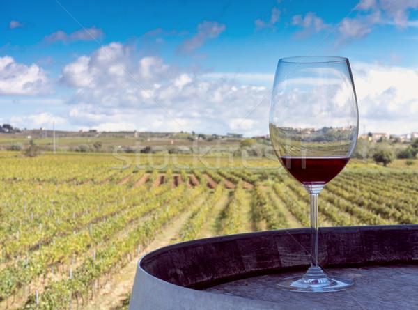 вино виноградник стекла баррель Сток-фото © photosil
