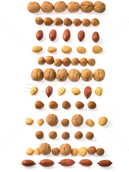 Nuts strips Stock photo © photosil