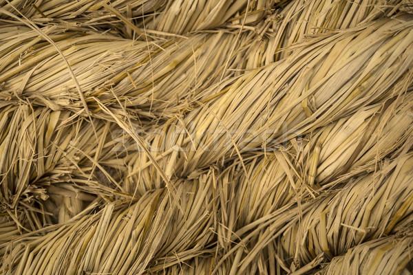 плетеный природы фон бамбук шаблон Сток-фото © photosil
