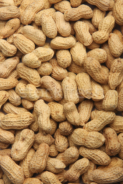 Peanut backgrounds Stock photo © photosoup
