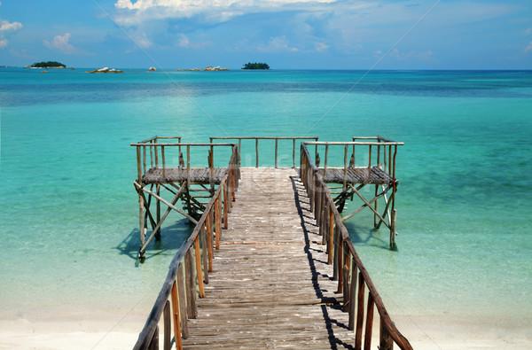 Festői édenkert sziget móló trópusi tengerpart tengerpart Stock fotó © photosoup
