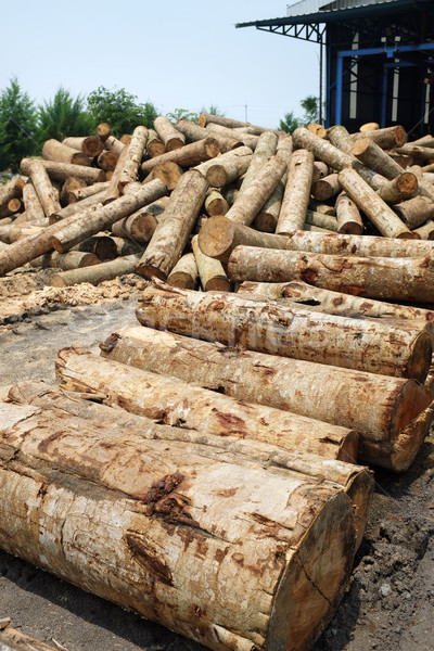 pile of timber wood log in a plywood mill factory Stock photo © photosoup