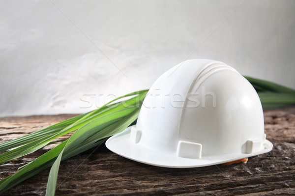 environmental friendly industry Stock photo © photosoup