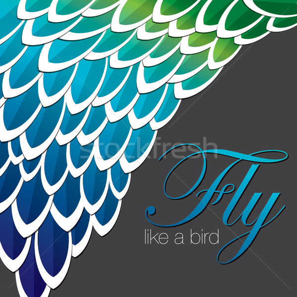 Peacock inspired abstract feather background in vector format. Stock photo © piccola