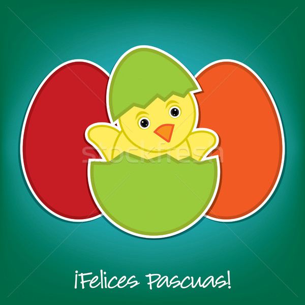 Spanish Baby Chick and eggs Easter card in vector format Stock photo © piccola