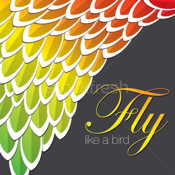 Lovebird inspired abstract feather background in vector format. Stock photo © piccola