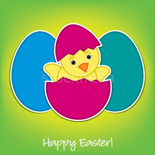 Baba csirke tojások húsvét kártya vektor Stock fotó © piccola