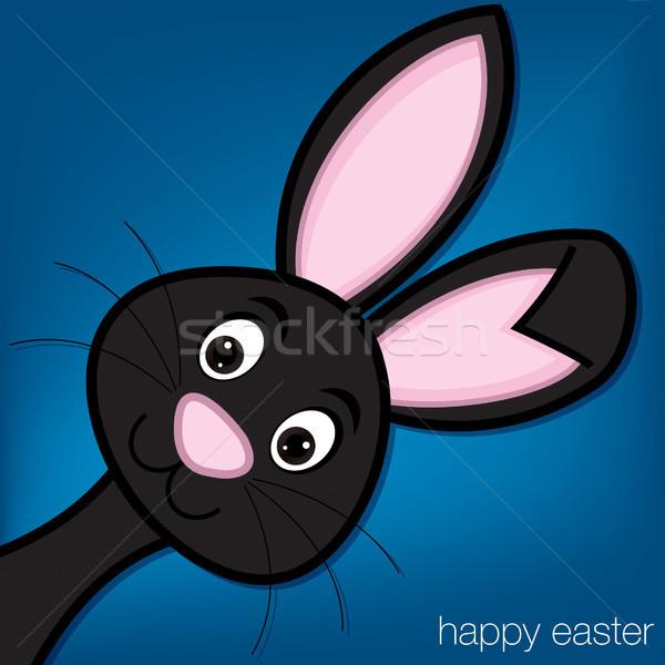 Stock fotó: Rejtőzködik · húsvéti · nyuszi · kártya · vektor · formátum · húsvét