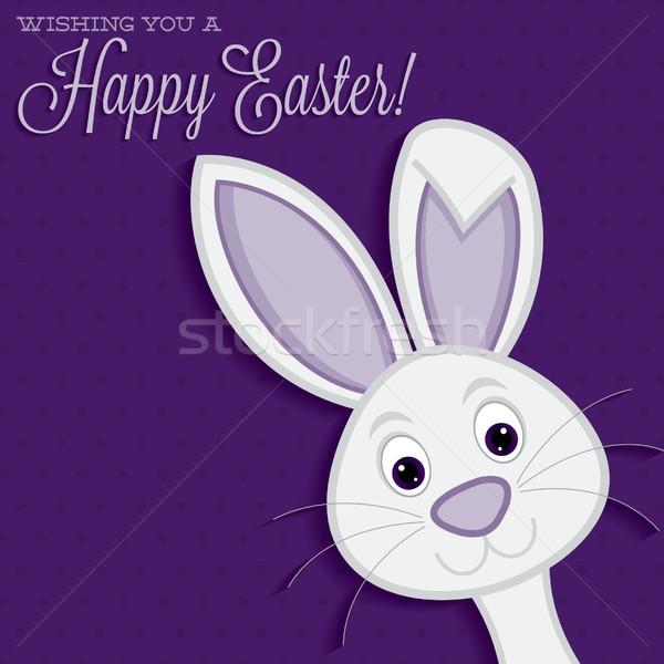 Heldere Easter Bunny kaart vector formaat Pasen Stockfoto © piccola