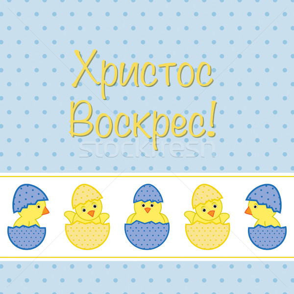 Russian Baby Chicks Easter card in vector format. Stock photo © piccola