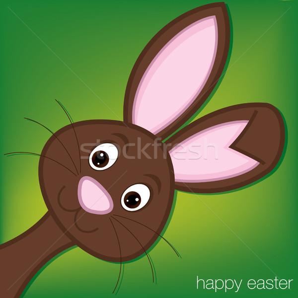 Stock fotó: Rejtőzködik · húsvéti · nyuszi · kártya · vektor · formátum · arc