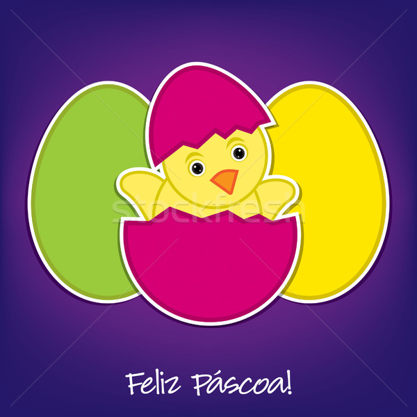 Portuguese Baby Chick and eggs Easter card in vector format Stock photo © piccola