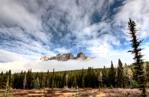 Castle Mountain Alberta Stock photo © pictureguy