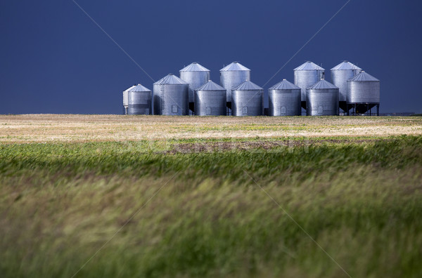 Saskatchewan cielo natura buio Foto d'archivio © pictureguy