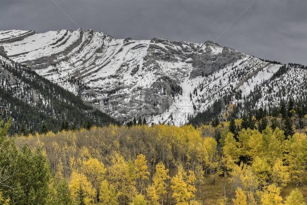 Rocky Mountains Kananaskis Alberta Stock photo © pictureguy